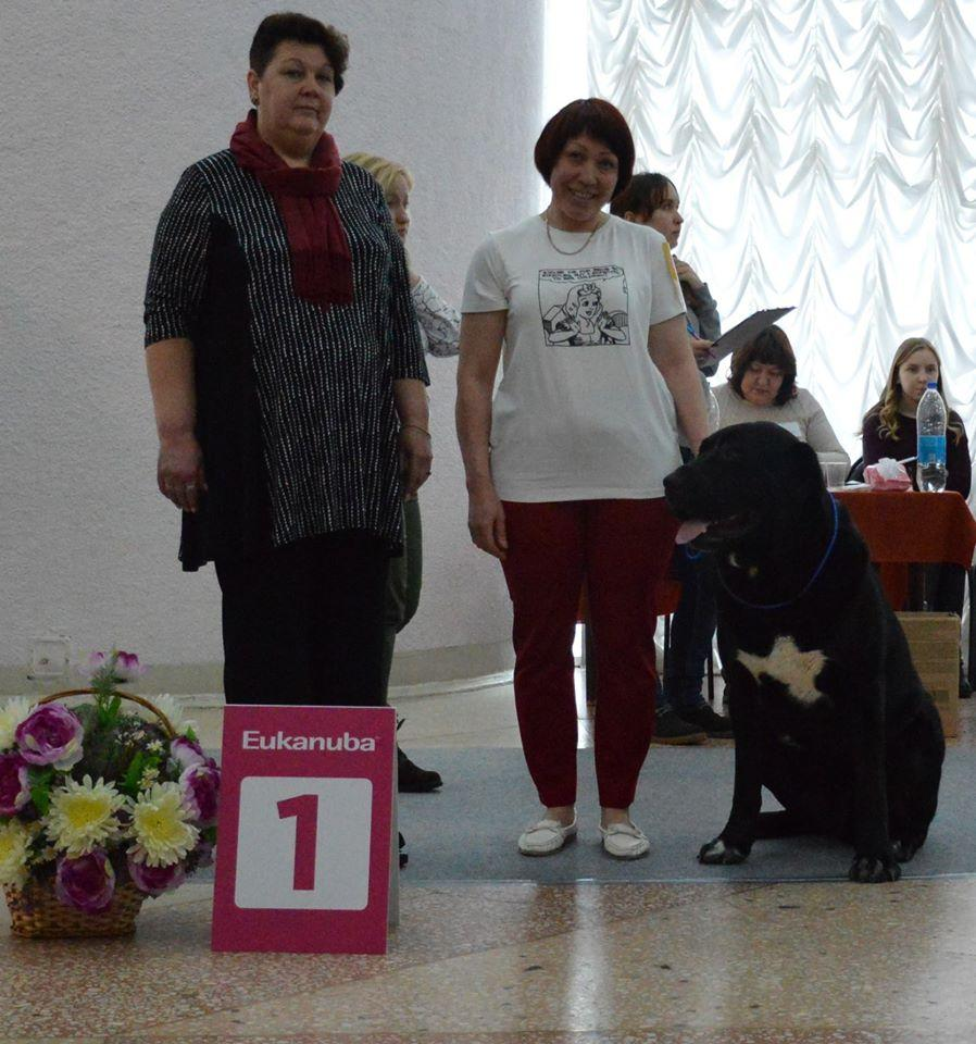 9 марта 2019 г. МОНО САО ранг ПК  г.ПЕРМЬ