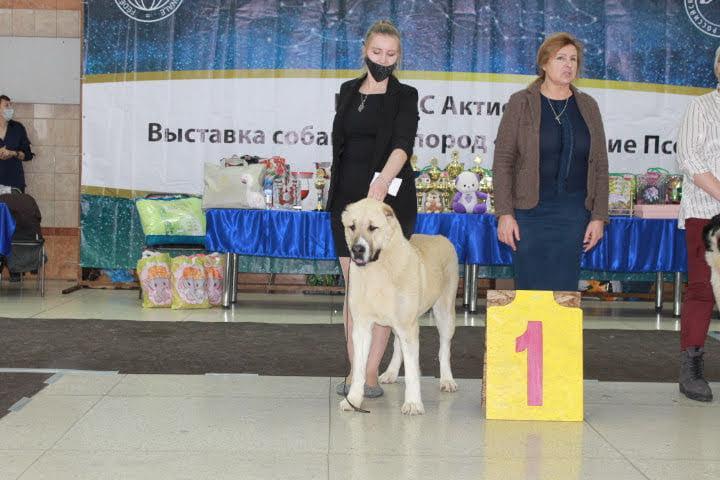 г. Екатеринбург - г. Новосибирск  21.02.21г.